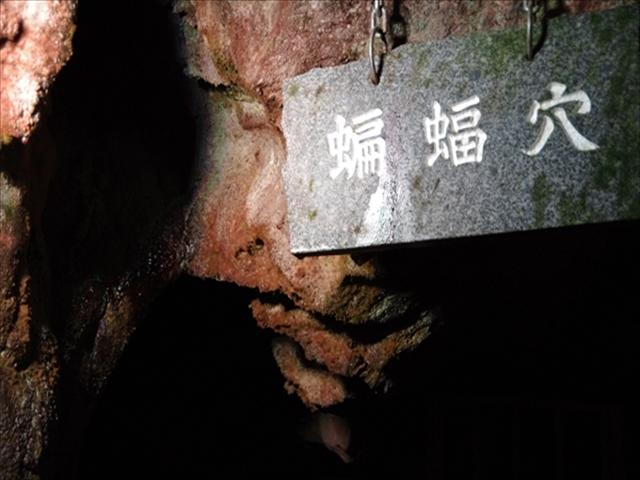 ③Bat Cavern