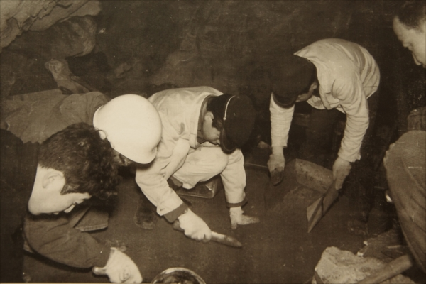 Excavational Investigation