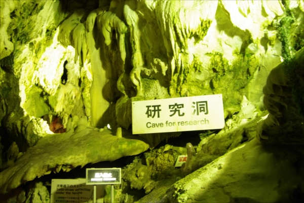 ⑧Research Cave